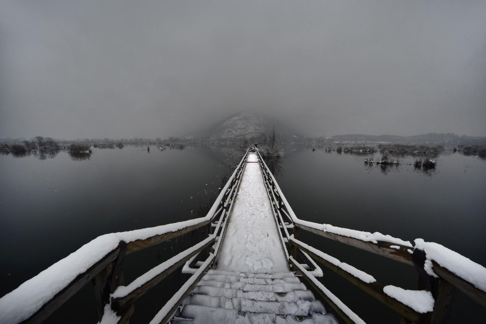 A SPASSO CON MILLA – Il fascino invernale delle torbiere
